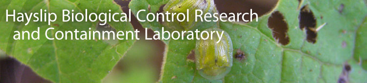 Hayslip Biological Control Research and Containment Laboratory - University of Florida, IFAS